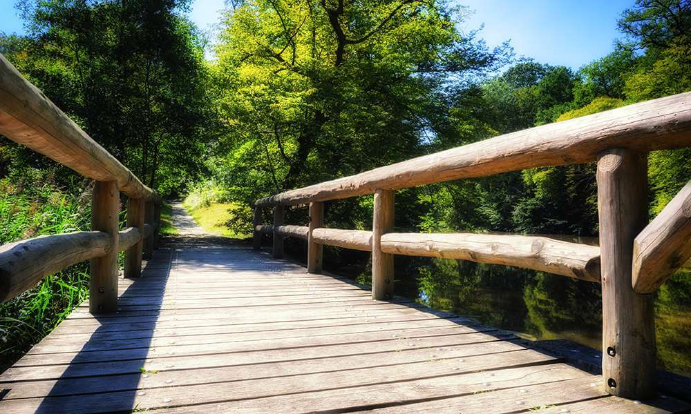 wooden bridge over forest river, background image